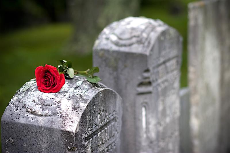 Love and Loss (Angled)